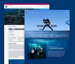 big-ocean-dive-ad-services